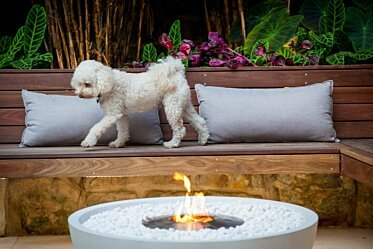 Stone Lotus Landscapes - Fire Pits