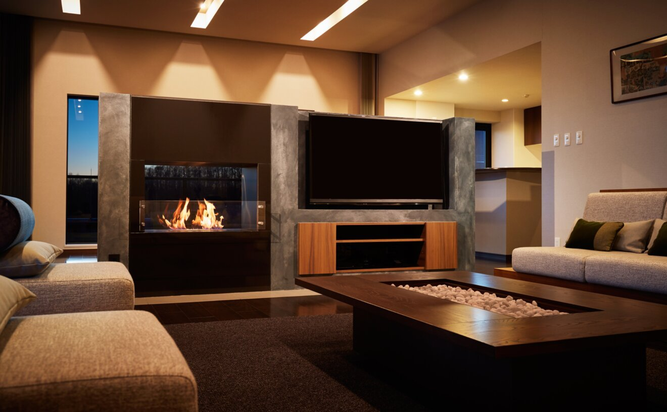 Firebox 800DB Fireplace Insert - Studio Image by EcoSmart Fire