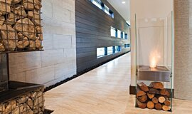 New American Home Indoor Fireplaces Freestanding Fire Idea